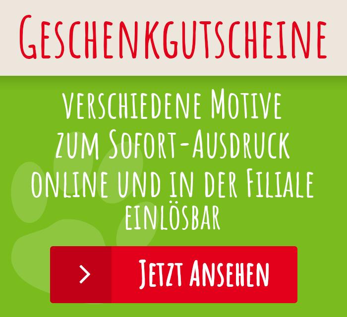 img-widget_GutscheinZwJi4aTIZcEuE